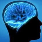 hafızayi ne güçlendiri
